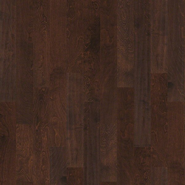 Whispering 5 Engineered Birch Hardwood Flooring in Dayton by Shaw Floors