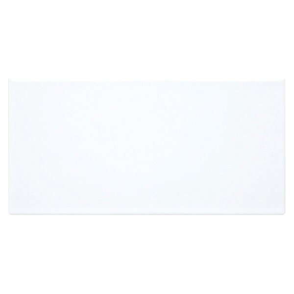Value Series 4 x 8 Ceramic Subway Tile in White by WS Tiles