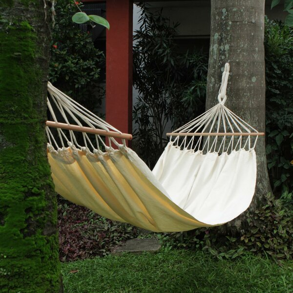 Euston Cornsilk Comfort Tree Hammock by Bungalow Rose