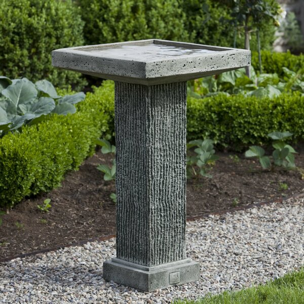 Reef Point Reef Point Birdbath by Campania International