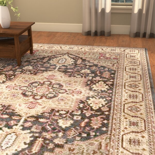 Alto Navy/Natural Area Rug by Darby Home Co
