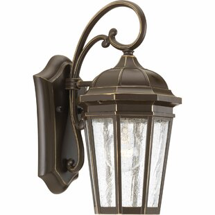 Great Price Edgewater 1-Light Outdoor Wall Lantern By Alcott Hill