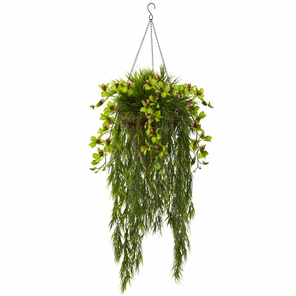 Bamboo and Dendrobium Hanging Flowering Plant in Basket by Nearly Natural