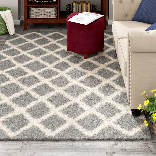 Knoxville Shag Gray/Ivory Area Rug by Alcott Hill