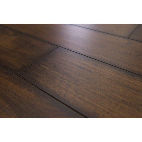 Geneva Prestige 6 x 48 x 12mm Maple Laminate Flooring in Dark Chocolate by Branton Flooring Collection