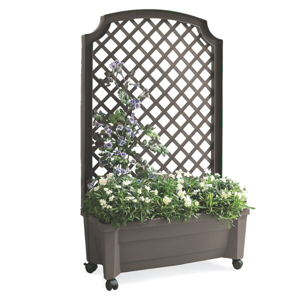 All In One Self Watering Planter Box With Trellis by Plow & Hearth