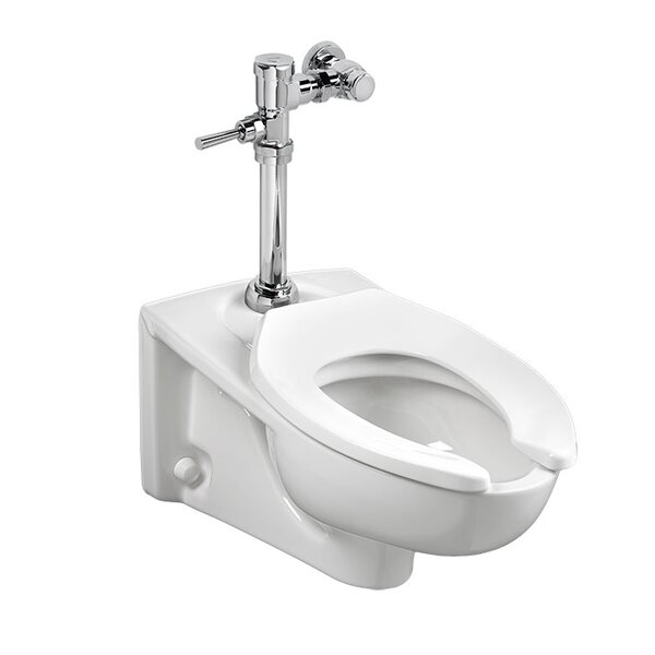 Afwall Dual Flush Elongated Toilet Bowl by American Standard