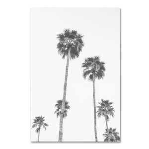 Palms 6 BW by Ariane Moshayedi Photographic Print on Wrapped Canvas by Trademark Fine Art