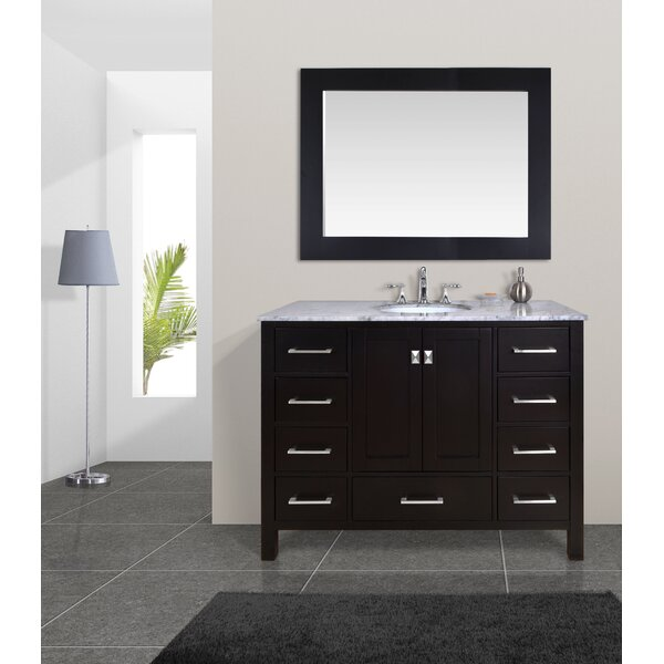 Ankney 48 Single Bathroom Vanity Set with Mirror by Brayden Studio