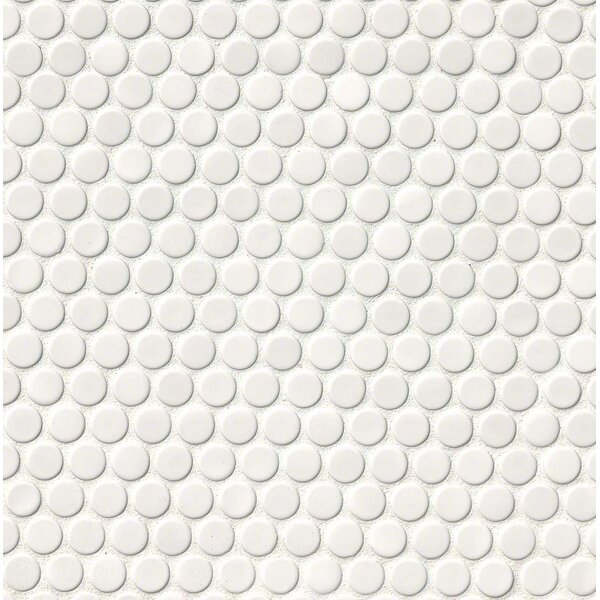 Penny Round Porcelain Mosaic Tile in Glossy White by MSI