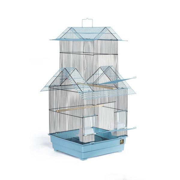 Beijing Bird Cage by Prevue Hendryx