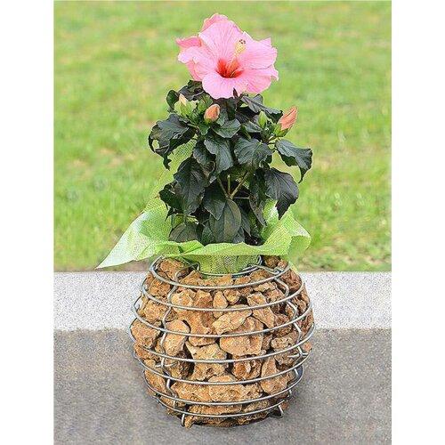 Audree Planter Sol 72 Outdoor Size: 49cm H x 50cm W x 50cm D