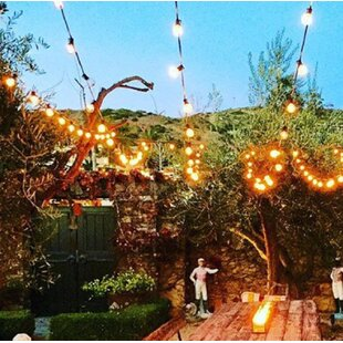 Low priced 20-Light Globe String Lights By Aspen Brands