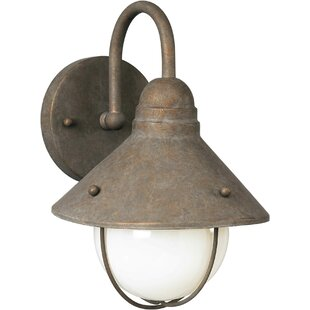 Top Reviews Manfredi 1-Light Outdoor Barn Light By Gracie Oaks