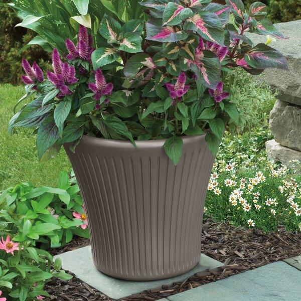 Tisa Resin Pot Planter (Set of 2) by Suncast