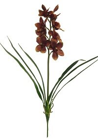 Cymbidium Orchid Stem (Set of 2) by Bloomsbury Market
