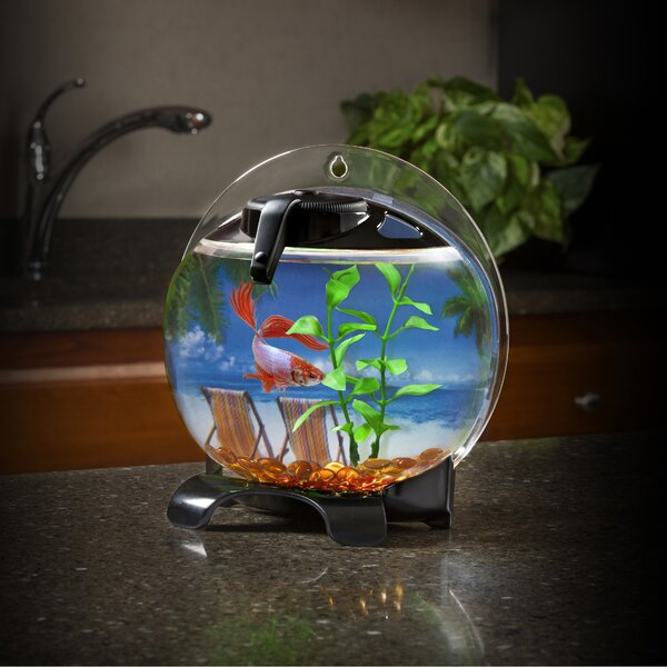 Nashville 0.5 Gallon Betta Bubble Aquarium Kit by Tucker Murphy Pet