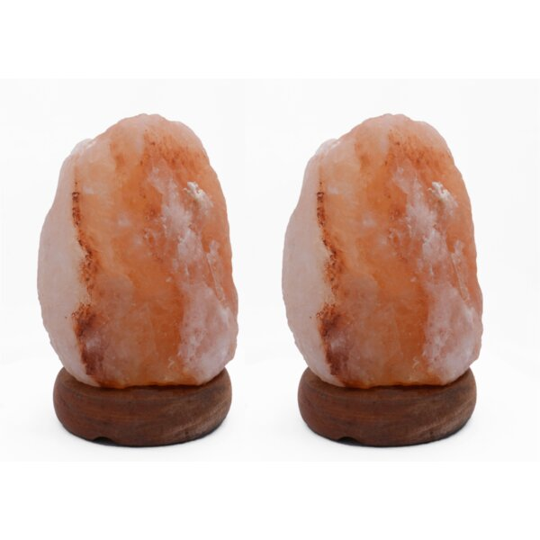 Coralie Natural 8 Himalayan Salt Lamp Set (Set of 2) by World Menagerie