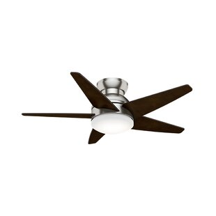 Affordable 44 Isotope 5 Blade Ceiling Fan By Casablanca Fan