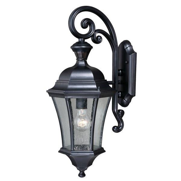 Carnanreagh Dualux® 1-Light Outdoor Wall Lantern by Astoria Grand