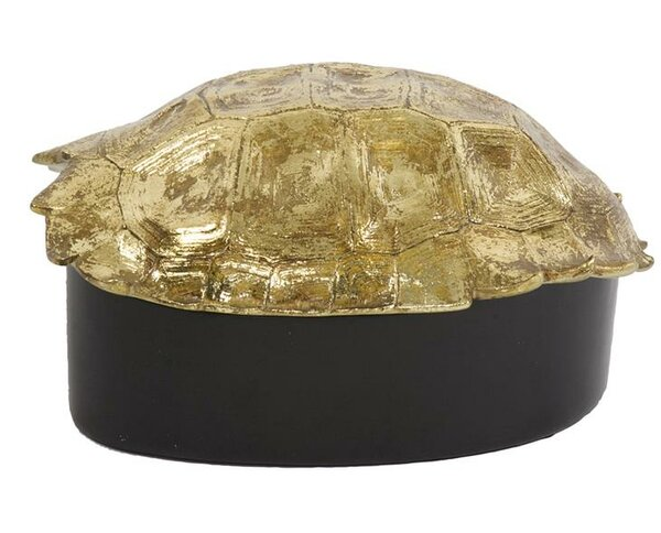 Gaskell Turtle Shell Decorative Box by Bay Isle Home