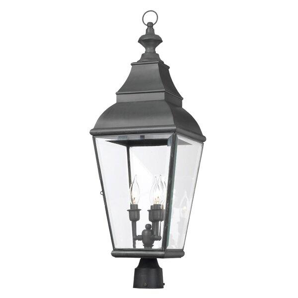 Greenspan 3-Light Lantern Head by Darby Home Co