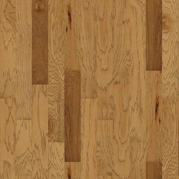 Globe 5 Engineered Hickory Hardwood Flooring in Hamburg by Shaw Floors