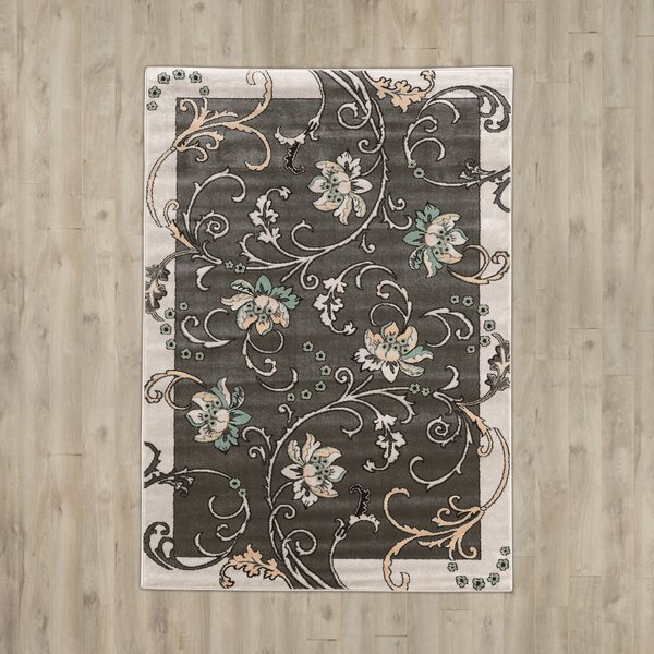 Sioux Falls Light Gray Area Rug by Charlton Home