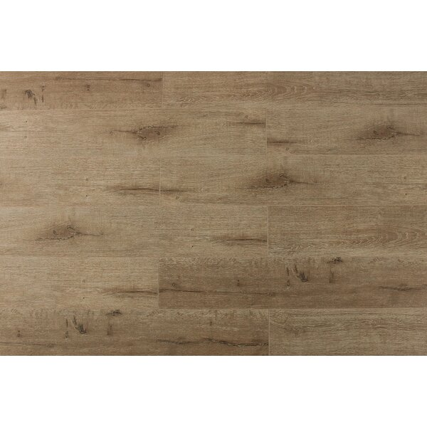 Jeramiah 7 x 48 x 12mm Oak Laminate Flooring in Champagne by Serradon
