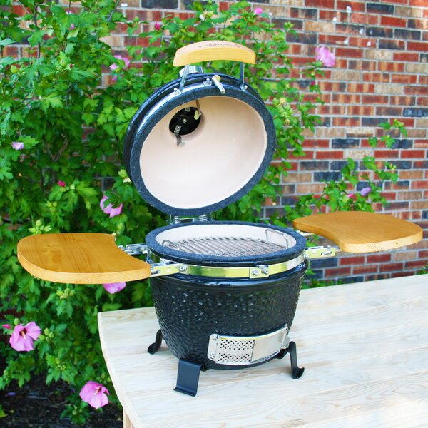 11 Classic P-Series Kamado Charcoal Grill by Vision Grills