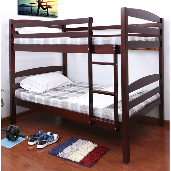 Connor Twin over Twin Bunk Bed by Viv + Rae