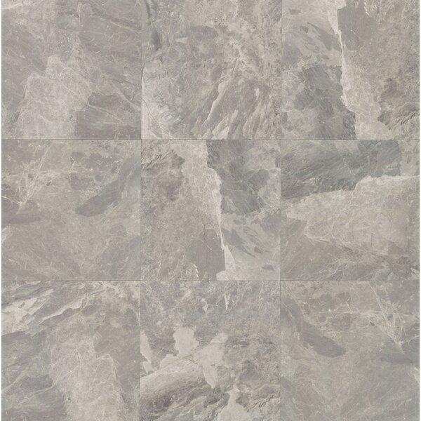 Classic 12 12 Porcelain Field Tile in Bardiglietto by Grayson Martin