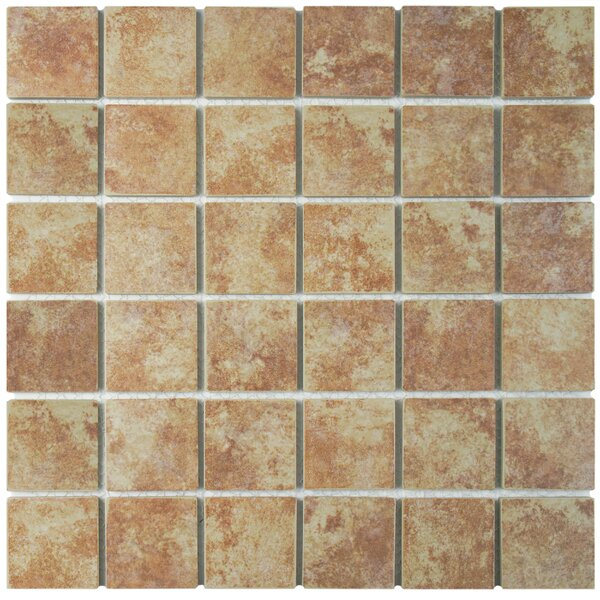 Elbert 2 x 2 Porcelain Mosaic Tile in Matte Brown/Beige by EliteTile
