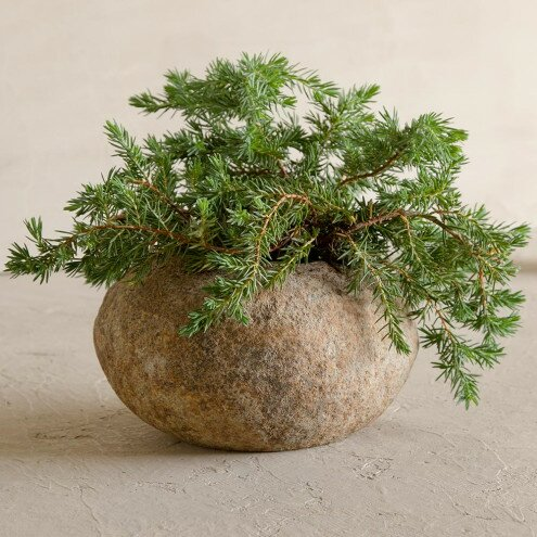 Stone Pot Planter by VivaTerra