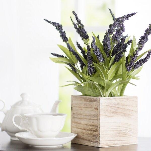 Understated Lavender by Lark Manor