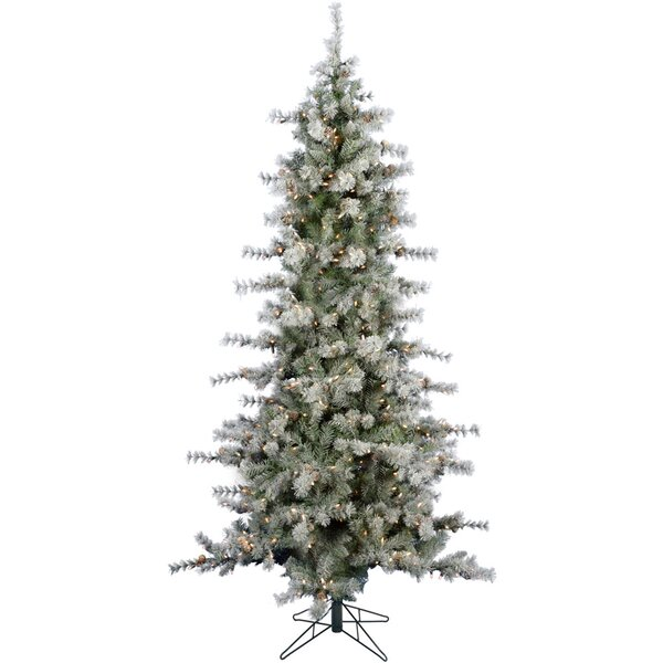 Buffalo Slim Snow/Green Fir Trees Artificial Christmas Tree with 400 with White LED String Lights by The Holiday Aisle