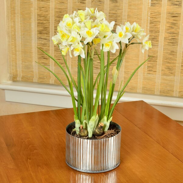 Artificial Daffodils Flower in Planter by Picnic at Ascot