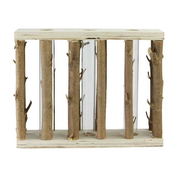 Greenfield Branches in Wood Frame Table Top Sculpture by Union Rustic