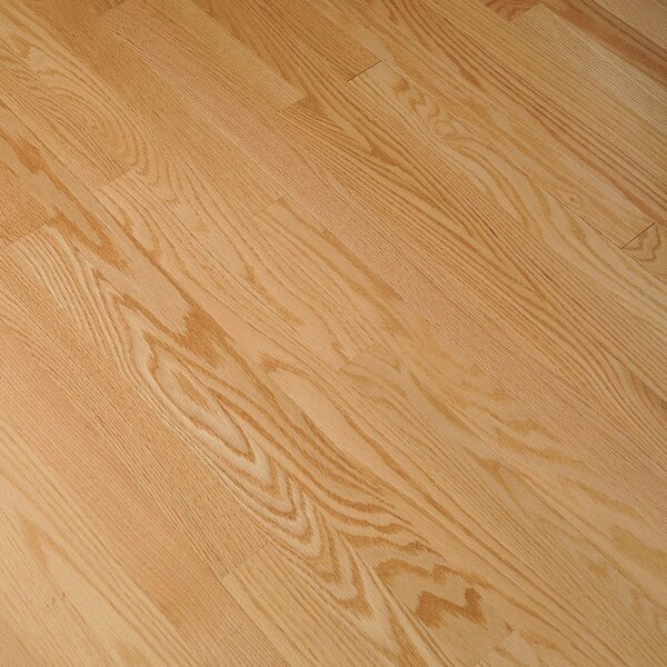Fulton 3-1/4 Solid Red Oak Hardwood Flooring in Natural by Bruce Flooring