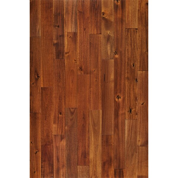 Americano 3-3/4 Solid Acacia Hardwood Flooring in Rooibos Red by Welles Hardwood