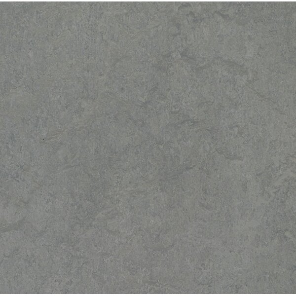 Marmoleum Click Cinch Loc 11.81 x 11.81 x 9.9mm Cork Laminate Flooring in Gray by Forbo
