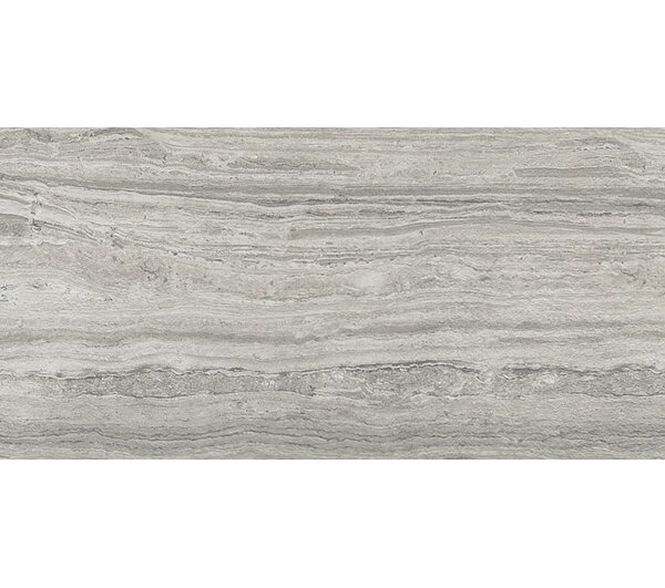 Terrane 12 x 24 Porcelain Field Tile in Gray by Emser Tile