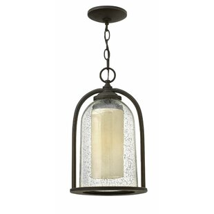 Affordable Ardean 1-Light Outdoor Pendant By Darby Home Co