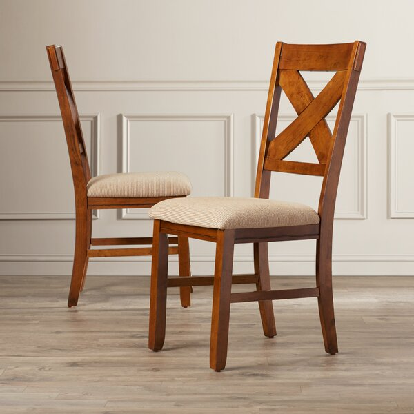 Warsaw Side Chair (Set of 2) by Alcott Hill