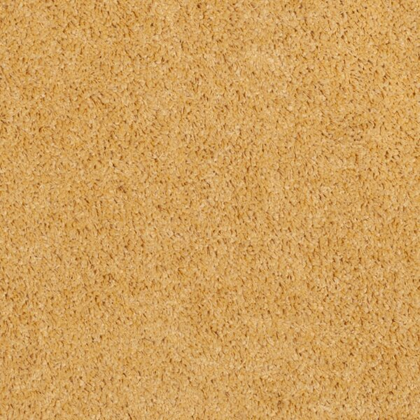 Curran Shag Gold Area Rug by Andover Mills
