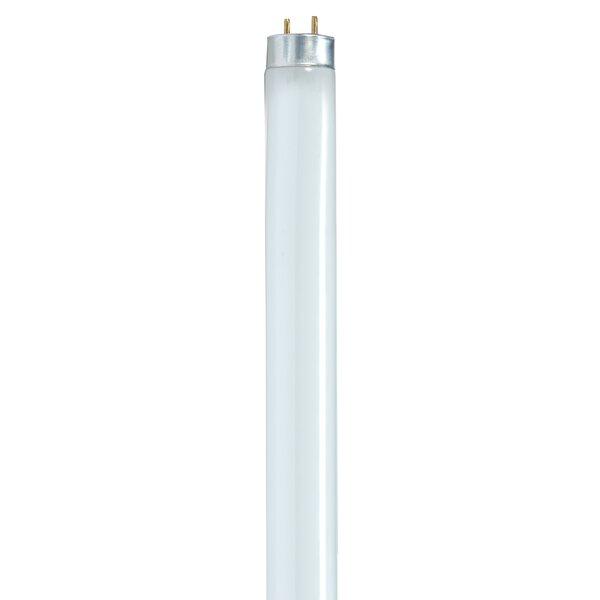 32 Watt T8 Linear Bulb in Cool White by Satco