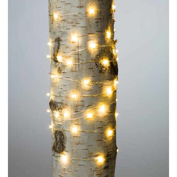 Firefly 60 Light Fairy String Light (Set of 12) by Plow & Hearth
