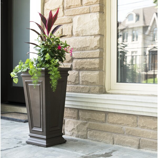 Sonia Self-Watering Plastic Planter Box by Charlton Home