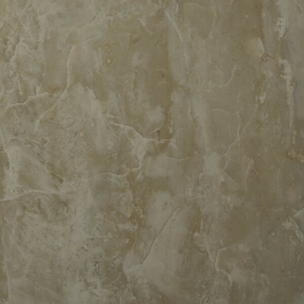 Pietra Onyx 12 x 12 Porcelain Field Tile in High Gloss by MSI
