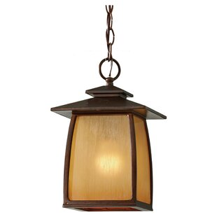 Purchase Alhambra 1  LED Lantern Pendant By Loon Peak